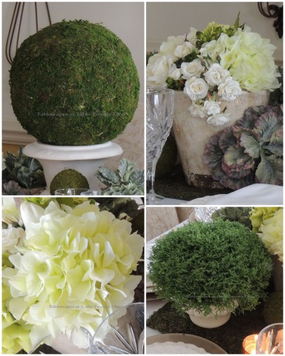 Flower, shrub, lg. moss ball collage