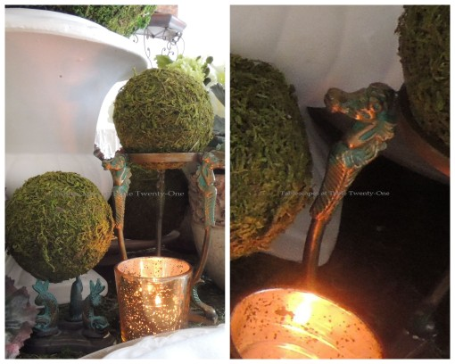 Moss balls on brass stand collage