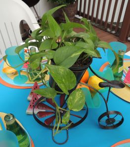 Tablescapes at Table Twenty-One, www.tabletwentyone.wordpress.com, Summer Fruits & Penny-farthings - penny-farthing with green plant