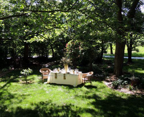 Tablescapes at Table Twenty-One, www.tabletwentyone.wordpress.com, Italian Honeysuckle: Table set up in yard
