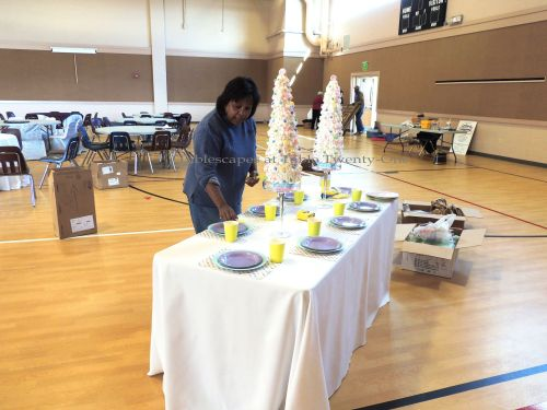 """Alycia Nichols, Tablescapes at Table Twenty-One, www.tabletwentyone.wordpress.com, """"Confectionery Christmas"""" – set up for Garlands & Gatherings, a benefit event for Hope Haven of Cass County, MO"""